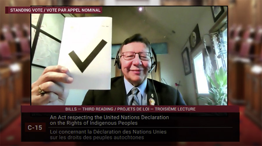 Senator Christmas votes in favour of the UN Declaration Implementation Act, June 16, 2021.